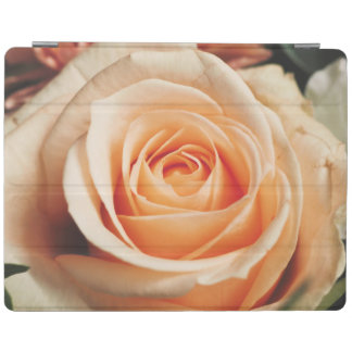 Romantic Rose Pink Roses Floral Flower iPad Cover