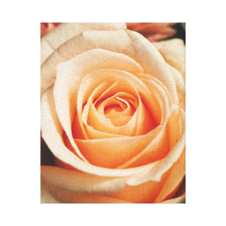 Romantic Rose Pink Roses Floral Spring Flower Canvas Print