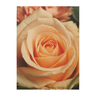 Romantic Rose Pink Roses Floral Spring Flower Wood Print
