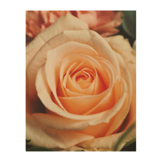 Romantic Rose Pink Roses Floral Spring Flower Wood Wall Art