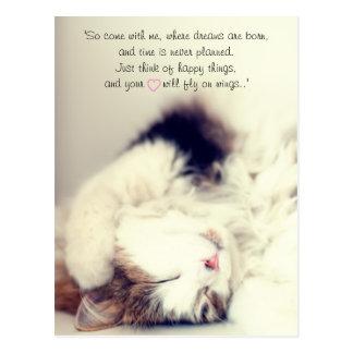 Romantic sleeping cat scene J.M. Barrie quote Postcard