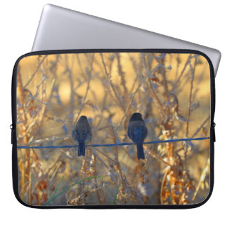 "Romantic sparrow bird couple on a wire, 15"" Photo Laptop Computer Sleeve"