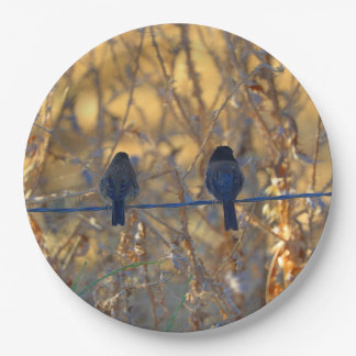 "Romantic sparrow bird couple on a wire, 9"" Photo 9 Inch Paper Plate"