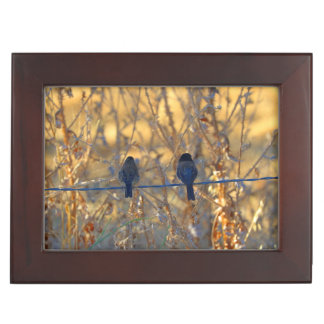 Romantic sparrow bird couple photo, Keepsake Keepsake Boxes