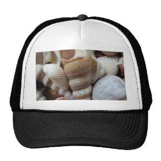 Romantic Tropical Exotic Sea Shells Beach Love Cap