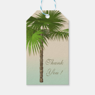 Romantic Tropical Palm Tree