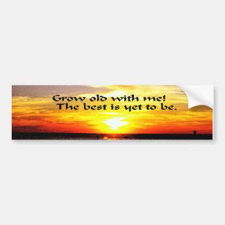 Romantic Valentine's Day Quote Bumper Stickers