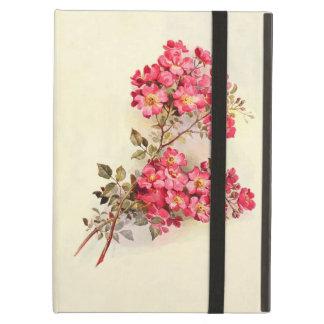 Romantic Vintage Pink Roses iPad Folio Cases