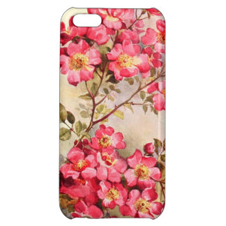 Romantic Vintage Pink Roses iPhone 5C Cover