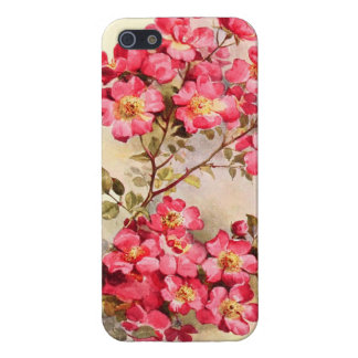 Romantic Vintage Pink Roses Cover For iPhone 5