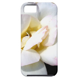 Romantic White Rose Vintage Soft Look iPhone 5 Cover