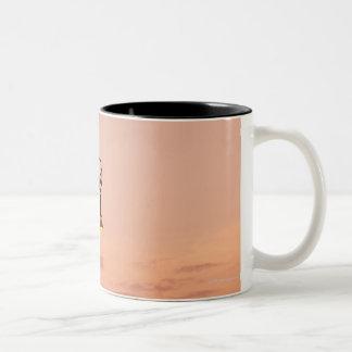 Rome 2 mug