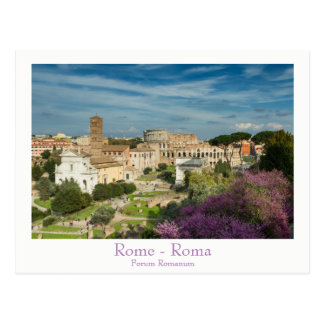 Rome - Forum Romanum postcard with text