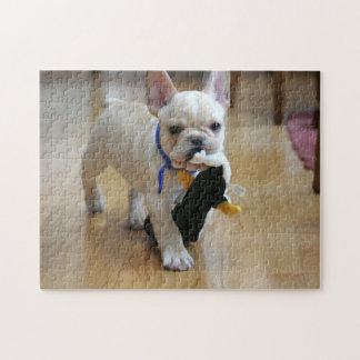 Romeo the French Bulldog Puzzle