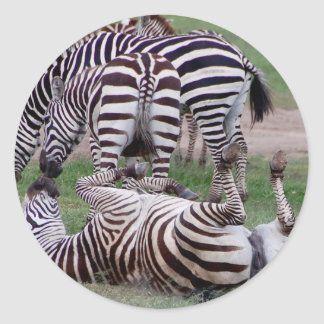 Romping About Round Sticker