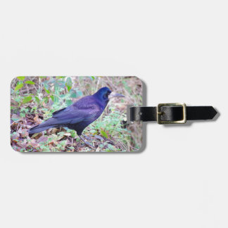 Rook Luggage Tag