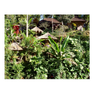Room with a view, Ubud, Bali Indonesia Postcard