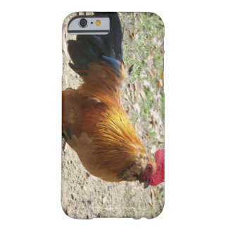 Rooster Cell Phone and Ipad case