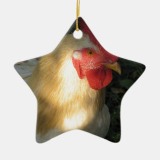 Rooster Ceramic Star Decoration