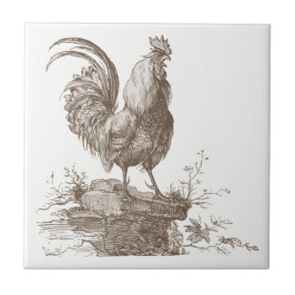 Rooster charming sepia tone illustration ceramic tile
