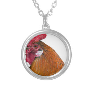 Rooster Head Silver Plated Necklace