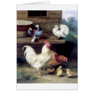 Rooster Hen Chicken Doves Greeting Card
