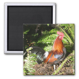 Rooster In The Leaves Square Magnet