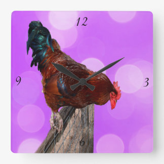 Rooster Nosy Parker, Pink Square Wall Clock. Square Wall Clock
