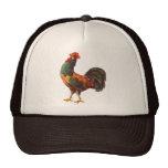 Rooster Vintage Kitchen Crate Art Hats