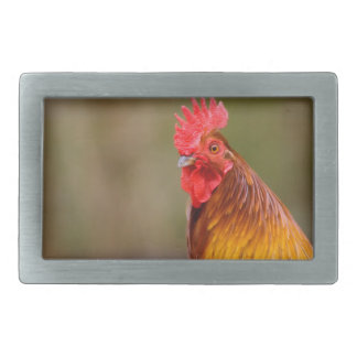 Rooster with Red Comb Head Belt Buckle