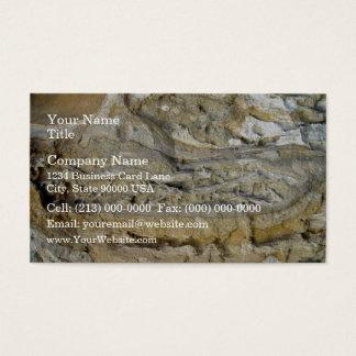 Root fossils in limestone seawall