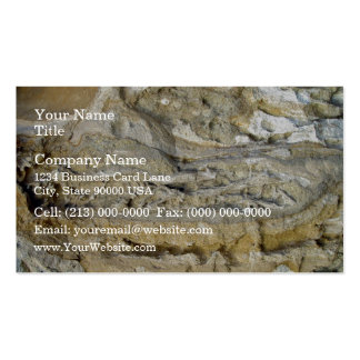 Root fossils in limestone seawall pack of standard business cards