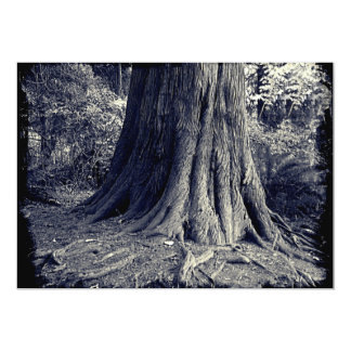 Roots Tree Card