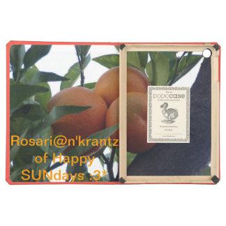 Ros@riankrantz of Happy SUNdays! :3* iPad Air Covers