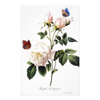 Rosa Bengale - Pierre Joseph Redouté. Stationery Design