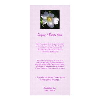 Rosa Canina - Dog Rose Rack Card