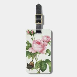 Rosa Centifolia Luggage Tag