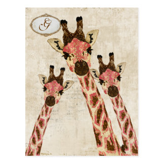 Rosa & Copper  Giraffes Monogram Postcard
