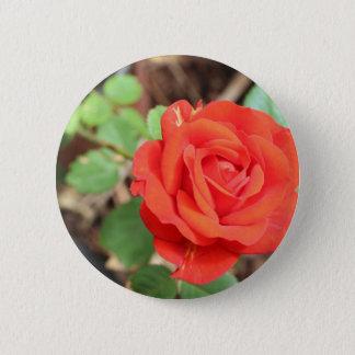 rose 6 cm round badge