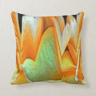 Rose Abstract Pillow