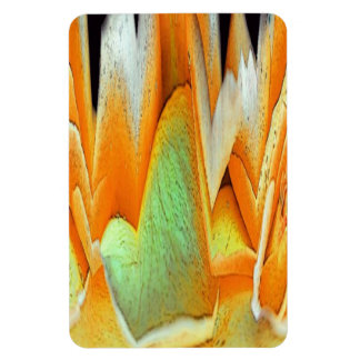 Rose Abstract Rectangular Magnets