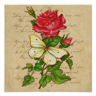 Rose and Butterfly Print