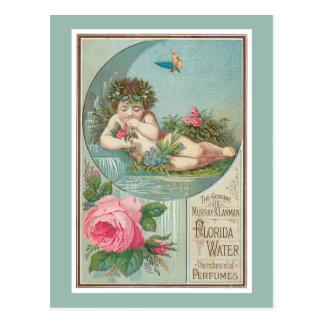 Rose and Cherub Florida Waters Postcard