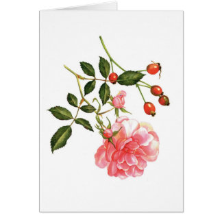 Rose and Hips Note Card