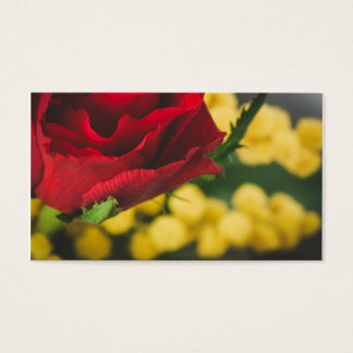 Rose and mimosas business card