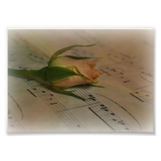 Rose and Music Photo Print