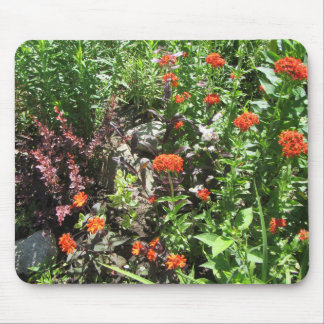Rose Barberry Maltese Cross Mouse Pad