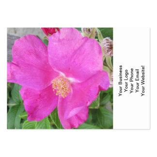 Rose Beach Plum Pink Business Card Template