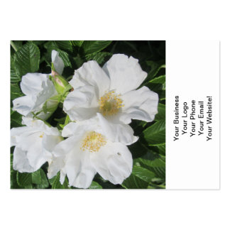 Rose Beach Plum White Business Card Templates