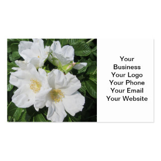 Rose Beach Plum White Pack Of Standard Business Cards